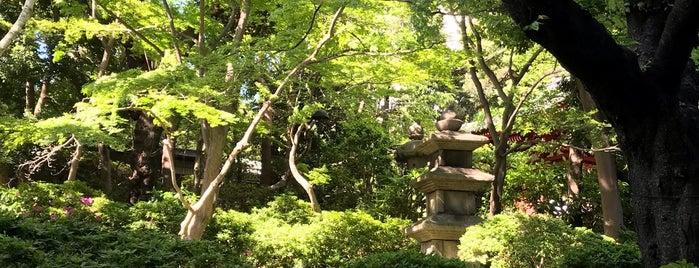 The Prince Sakura Tower Tokyo is one of Orte, die Nouf gefallen.