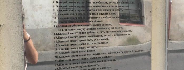 Užupio konstitucija is one of Tempat yang Disukai Carl.