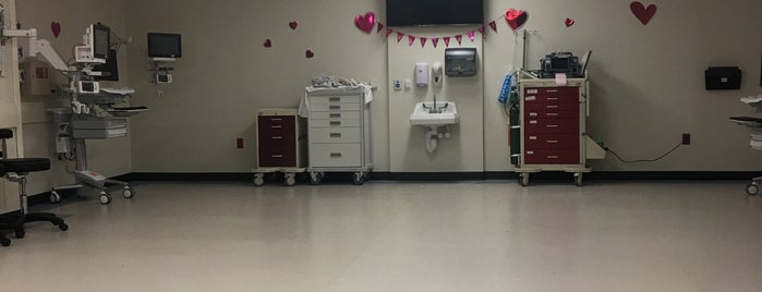 Lyndon B. Johnson General Hospital is one of Gregory : понравившиеся места.