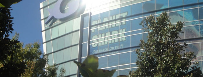 Georgia Aquarium is one of Recommendations in Atlanta.