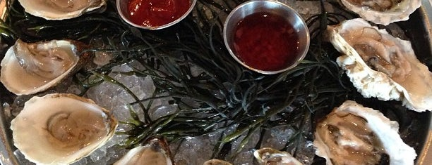 The River Oyster Bar is one of Miami Restaurants to Check Out.