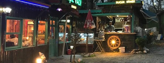 Yeşil Vadi Restaurant is one of Tempat yang Disukai Çağlar.