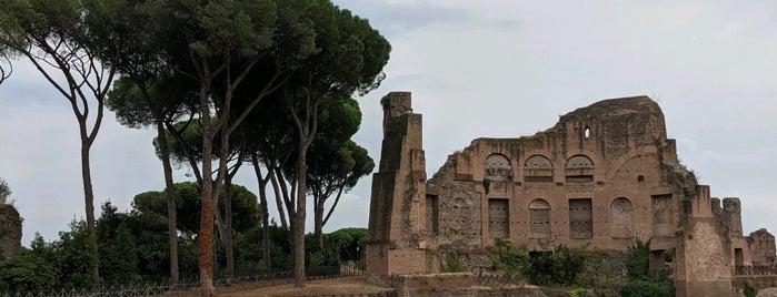 Stadio palatino is one of NYC➡️SPAIN➡️FRANCE➡️ITALY Trip.