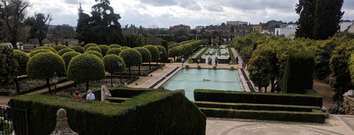 Jardines del Alcazar is one of Fedor : понравившиеся места.