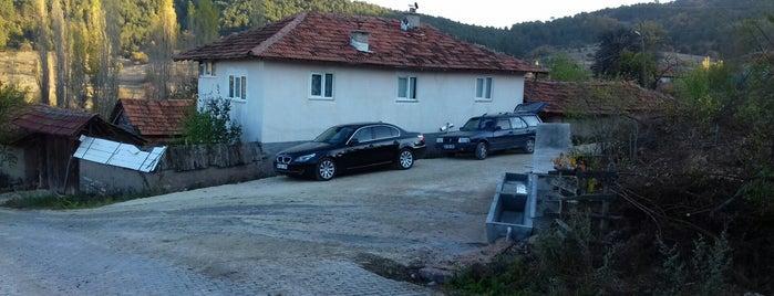 Söğütyaylası is one of Kütahya | Merkez Köyler.