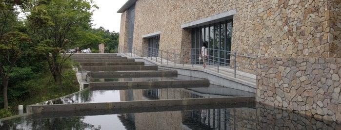 Museum SAN is one of สถานที่ที่ sj ถูกใจ.