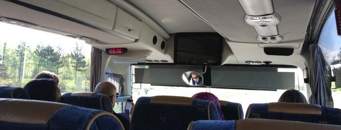 Flybussen is one of mody.