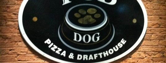 Pub Dog Pizza & Drafthouse is one of Maryland Brewery Tour.
