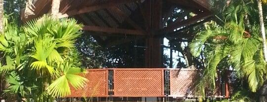 Tilajari Resort Hotel is one of Lugares favoritos de Wayne.