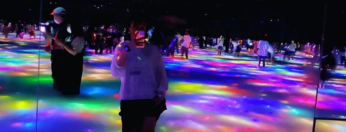teamLab Planets is one of Japan. Places.