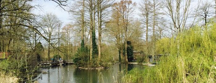 Tierpark Lange Erlen is one of INTERRAILIN'.