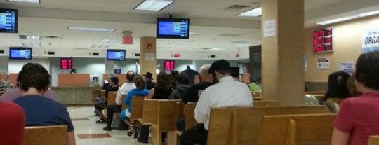 New York State DMV is one of Lieux qui ont plu à Sean.