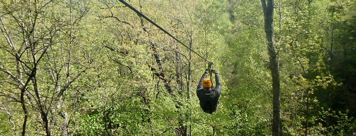 The Gorge Zipline is one of Ericさんのお気に入りスポット.