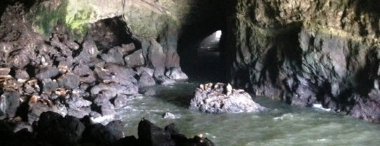 Sea Lion Caves is one of Oregon - The Beaver State (1/2).