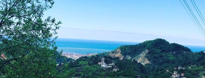 Trabzon/OF/Miçço is one of İle Gidilecek Yerler.