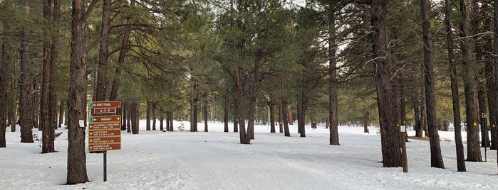 Flagstaff Nordic Center is one of Posti che sono piaciuti a Dallin.