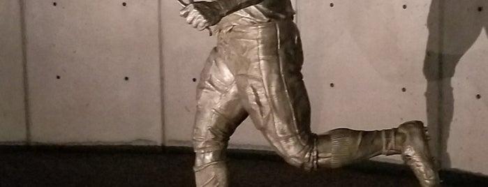 Pat Tillman Memorial is one of Arizona.