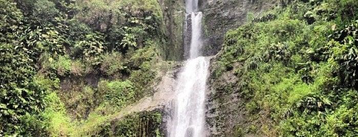 Les Chutes de Moreau is one of Martinique & Guadeloupe.