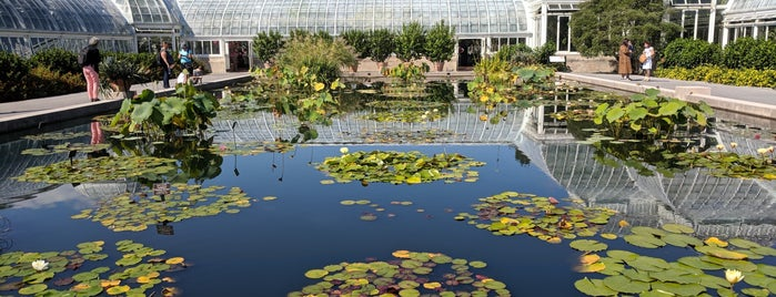 Monet's Garden at The New York Botanical Garden is one of NYC with hussein future fun timez.