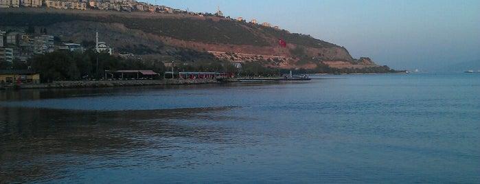 Hereke İskelesi is one of Doğaさんの保存済みスポット.
