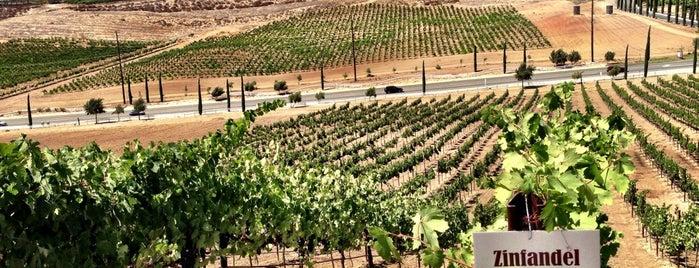 Bel Vino is one of Award Winning Temecula Wineries.