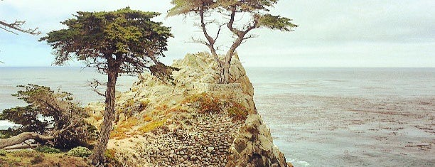 Pebble Beach is one of Sightseeings.