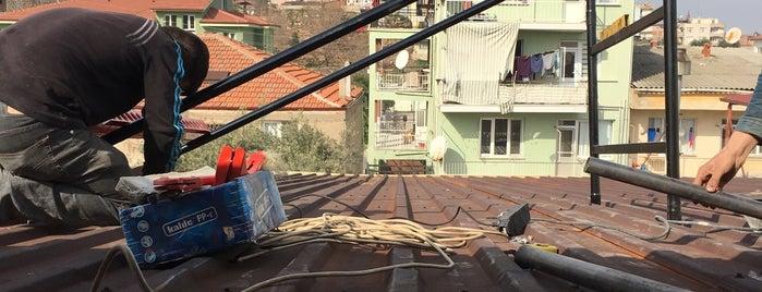 Yeni Mahalle is one of themaraton.
