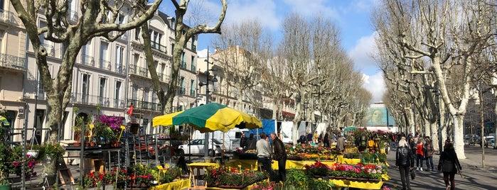 Allées Paul Riquet is one of สถานที่ที่บันทึกไว้ของ Jean-Marc.