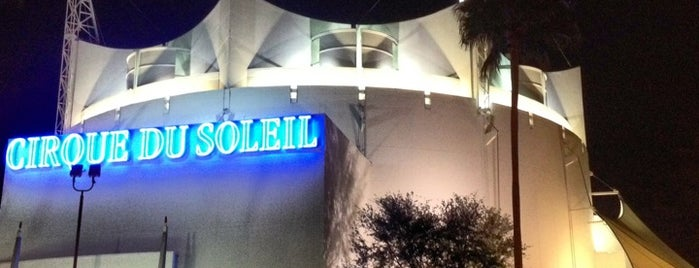 La Nouba by Cirque du Soleil is one of Downtown Disney Guide by @bobaycock.