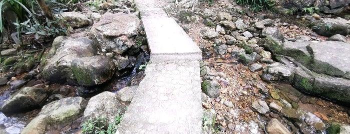Hong Kong Trail (Section 1) is one of Meri'nin Beğendiği Mekanlar.