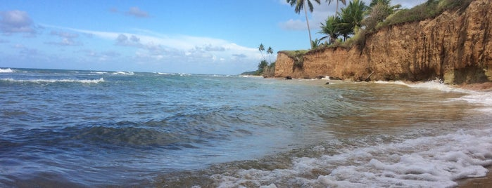 Vieques National Wildlife Refuge is one of Puerto Rico.