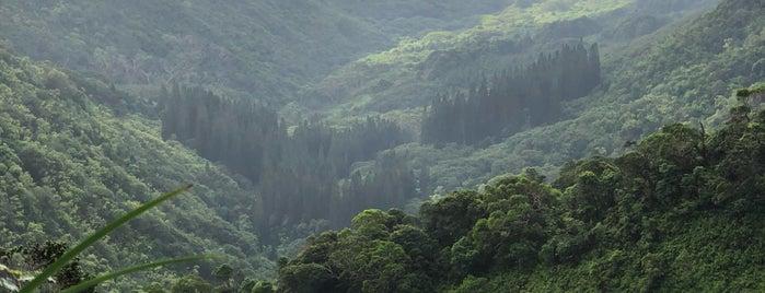 Wiliwilinui Trail Summit is one of Favorite Local Kine Hawaii.