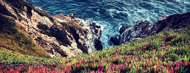 Devil's Slide Coastal Trail is one of Locais curtidos por Stephanie.