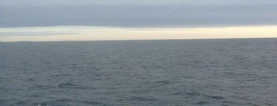 Suomenlahti / Gulf of Finland is one of Turku.