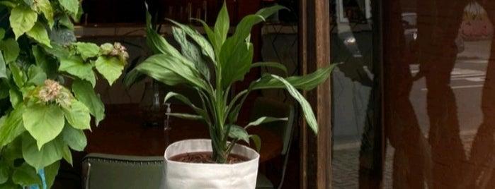 Botanique is one of Vegan CWB.