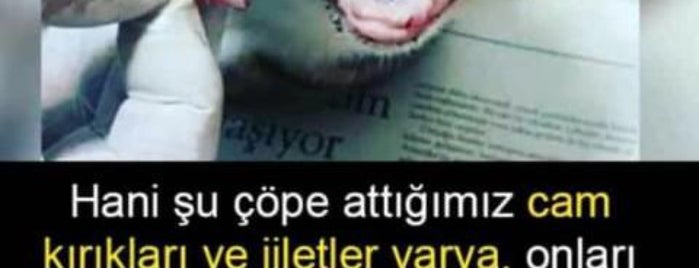 YKY Yayınları Gaziantep Şubesi is one of MLTMSLMZさんのお気に入りスポット.