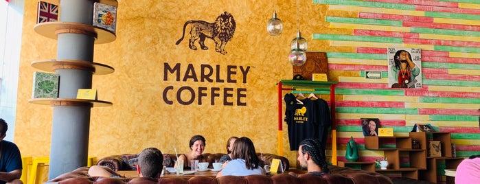 Marley Coffee is one of Locais curtidos por Julian.