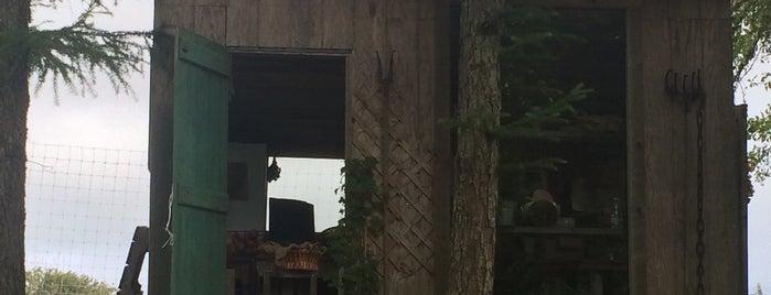 Beetlebung Farm is one of Travel.