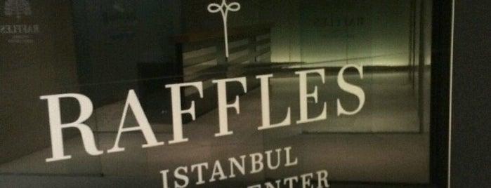 Raffles Istanbul Zorlu Center is one of Istanbul.