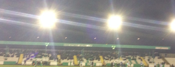 Horsfall Stadium is one of Non-League Football Grounds (Northern).