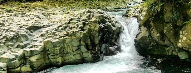 かに滝 is one of 伊豆.