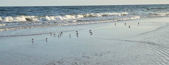 Egypt Beach is one of Hamptons Honeymoon.