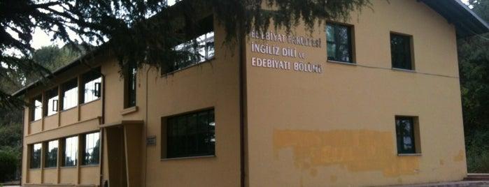 İngiliz Dili ve Edebiyatı Bölümü is one of Trabzon.