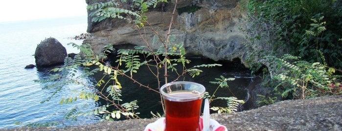 Ganita Çay Bahçesi is one of Baharın tadına demli bir çayla varın.