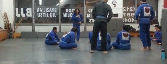 Vitor Shaolin Brazilian Jiu Jitsu is one of Ishan : понравившиеся места.