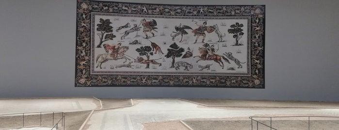 Haleplibahçe Mozaik Müzesi is one of Tempat yang Disukai Merve.