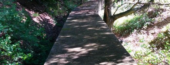 Secret Sidewalk is one of Scenic Spots in SF:.