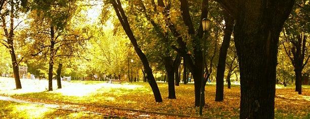 Парк у пруда Бекет is one of Lugares guardados de Елизавета.