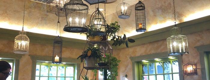 The Trellis Restaurant is one of Posti che sono piaciuti a Karen.