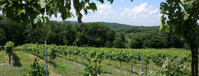 Demarest Hill Winery is one of Glenwood Trip.